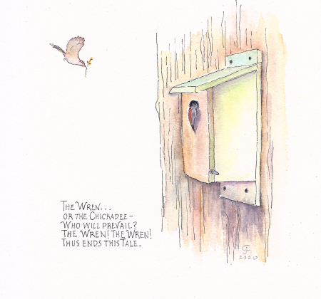 Nest box drawing